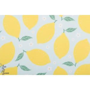Lycra Maillot de Bain Lemon Tygdrommar