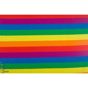 jersey Bio rainbow by Ernest