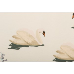 French terry Swan cloud White SYAS cygne soft cactus summer