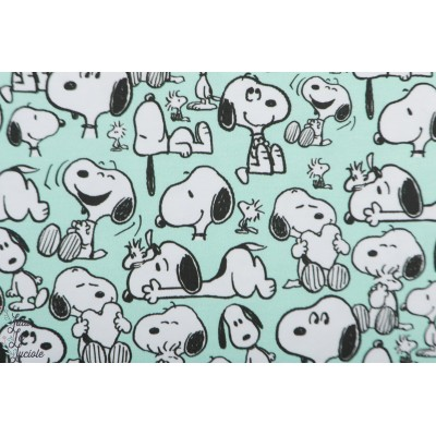 jersey Bio Peanuts Snoopy Happiness bd vintange chien