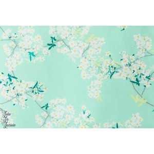 Popeline Fleurs de cerisier fond bleu