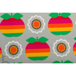 Jersey Apple Rainbow Grey pomme arc en ciel vintage in my heart