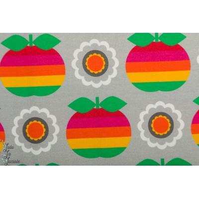 Jersey Apple Rainbow Grey pomme arc en ciel vintage in my heart