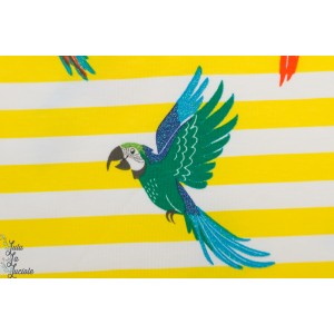 Jerey Parrots glitter yellow marinnière rayure jaune oiseau peroquet