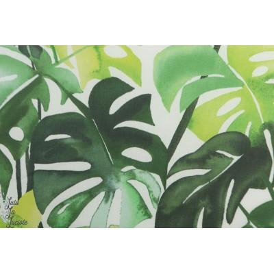 laminé Bio Philodendron Cloud9 mat feuille tropical vert imperméable vert pluie