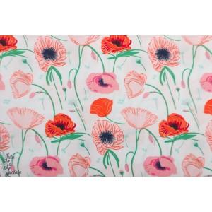 Popeline Poppy Hill AGF Flowerette coquelicot fleur jardin