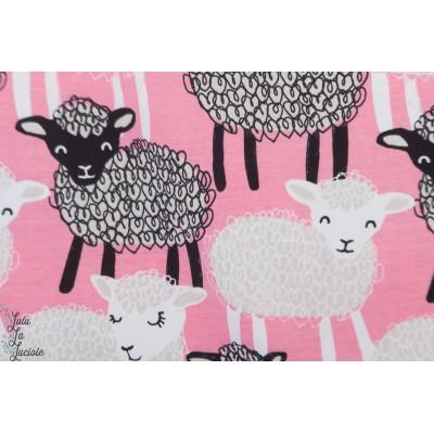 Jersey Bio Paapii Bãã Light pink agneau mouton rose