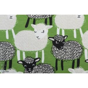 Jersey Bio Bãã paapii forest agneau enfant mouton vert