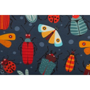 Jersey Bio bugs gris  by ernest insecte papillon nature