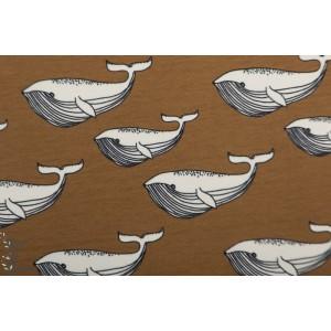 Sweat bio Elvelyckan Design Whale Nutmeg