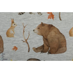 Sweat Bio Bear Woodland Tygdrommar ours animaux forêt gris