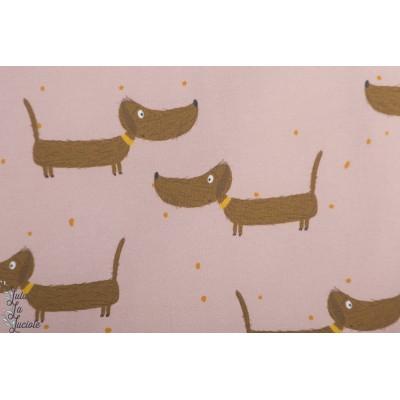 Jersey Bio Dackel Bodo 2 Lillestoff Lillemo chien