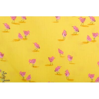 Popeline Malibu  Windham 52149-12 oiseaux