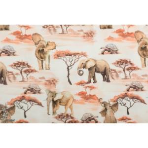jersey savane elephant afrique