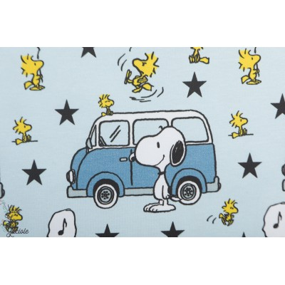 Jersey bio Snoopy and minivan
