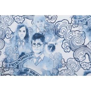 Jersey Harry Potter friendship