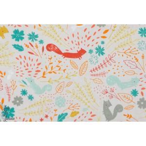 tissu coton Popeline Blend Faraway forest animaux écureuil forêt
