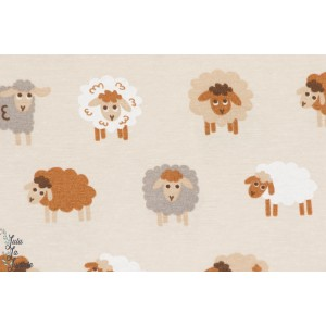 Coton Tango : Moutons