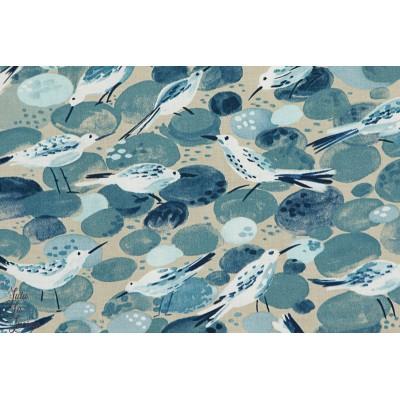 tissu coton Popeline Bécasseau - sanspipers petit oiseau michael miller