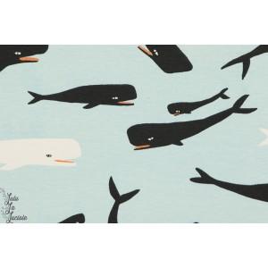 Jersey bio BIRCH whales Sky baleine mer